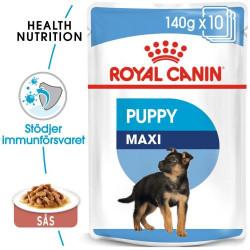 ROYAL CANIN  Maxi Junior 140g