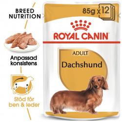 ROYAL CANIN  Dachshund Ad...