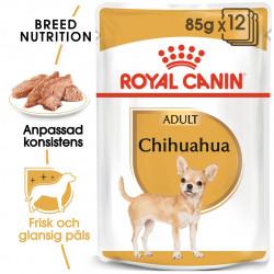 ROYAL CANIN Chihuahua Ad...
