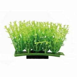 Plant pad 1