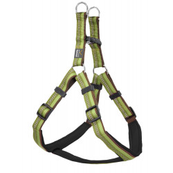 Step-in-sele Active 70-85 cm