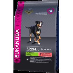 Eukanuba Dog Ad Salmon & Rice